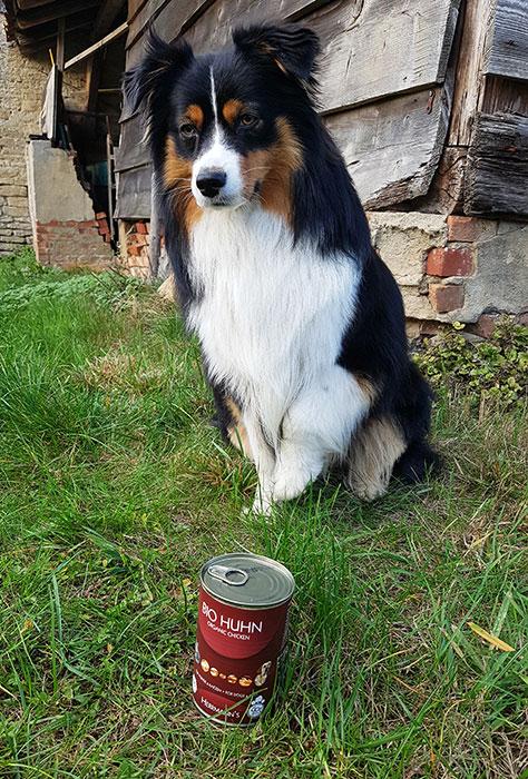 herrmanns-bio-hundefutter-pelle