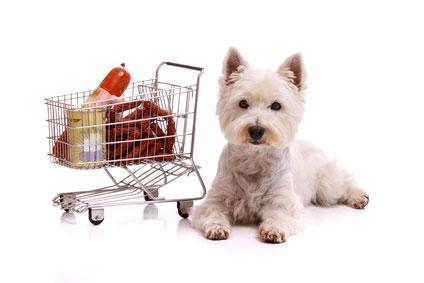 Was steckt wirklich im Hundefutter drinnen?