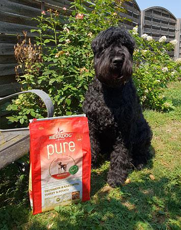 Hund mit Mera Dog Pure Truthahn & Kartoffeln