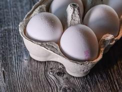 Dürfen Hunde Eier essen?