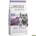Little Wolf of Wilderness Junior – Wild Hills