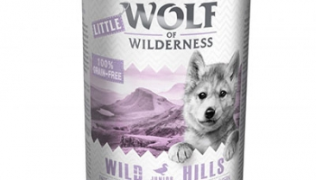 Little Wolf of Wilderness – Wild Hills