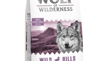 Wolf of Wilderness – Wild Hills